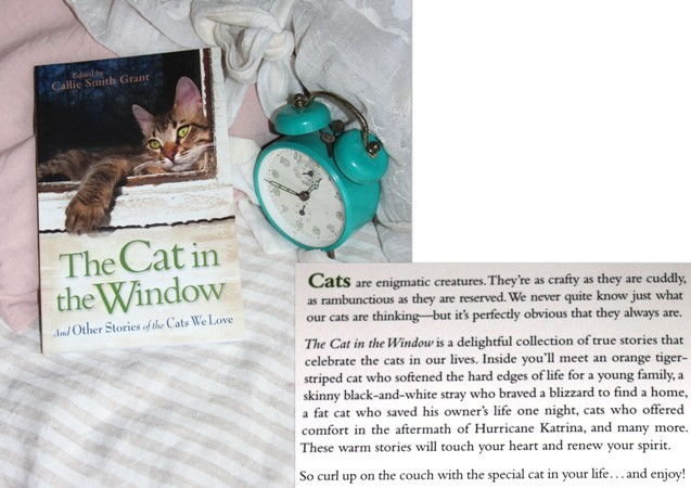 13 a. THE CAT IN THE WINDOW, uredila Calli Smith   IC = 3 eur