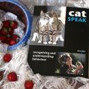 14b. CAT SPEAK   IC = 3 eur