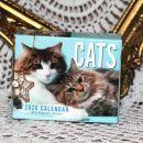 6. Cats mini koledar     IC = 5 eur