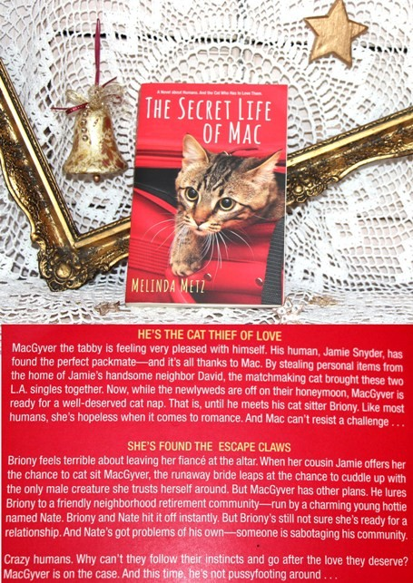 14c. THE SECRET LIFE OF MAC, Melinda Metz   IC = 4 eur