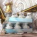 44. Čajne svečke v obliki medvedkov   ICa,b = 3 eur