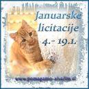 Licitacije januar 2020