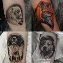 23b. Tetovaža-portret ljubljenčka v realističnem stilu   IC = 100 eur