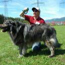 Zreli psi; Lin, lastnik Tone Oder-RCAC