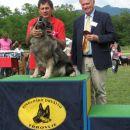 Šana je še dobila priznanje za najlepšega avtohtonega psa