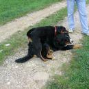 Till & Baya (16.04.2006)