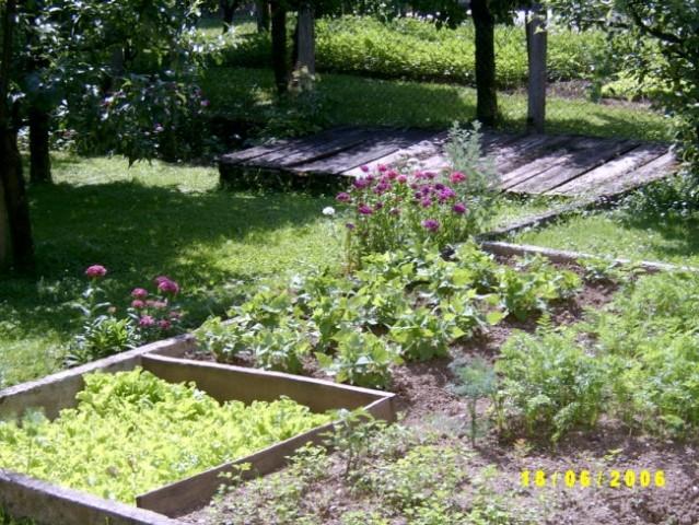 Malo nasega vrta , en del , tko 1 tretina