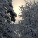Zimska idila 1