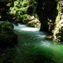 Reka Radovna in soteska Vintgar
