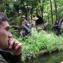 Gardaland Jungle