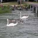 Balaton julij 2005