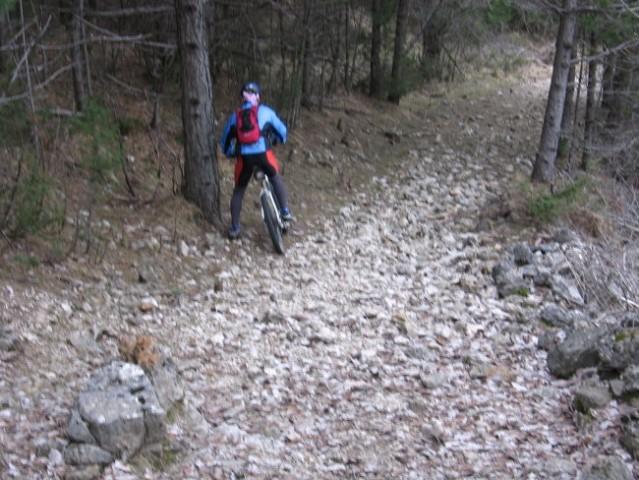 Spodnji del (pred Zagradom)planiske poti precej kamnit
