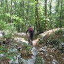 ..po planiki iz smeri Rečina -  Lovran