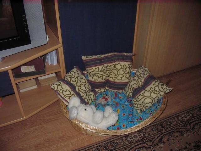 Pupa in Miki - foto