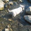 ufff kak paše mrzla voda v tem vročem dnevu...