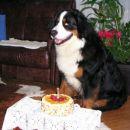 Moj 1. rojstni dan 3.3.2004