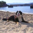 Izležavanje na plaži