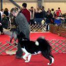 CAC Celje 10.12.2006;  BOB, Winter Winner
