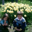 Arboretum -prihod in začudenje nad množico rož