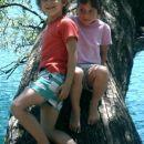 na povešenem deblu ob Blejskem jezeru