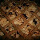 jabolčni kvašen kolač iz polnozrnate moke