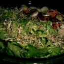 solata kristalka s kalčki; ribano zelje in korenje s fižolom in mladim lukom