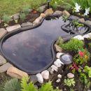 Moje malo vodno kraljestvo - ribnik - spomladi
