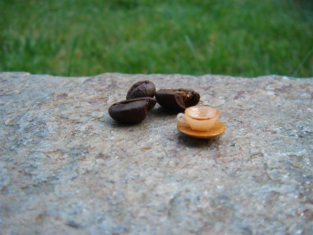 Miniature - foto