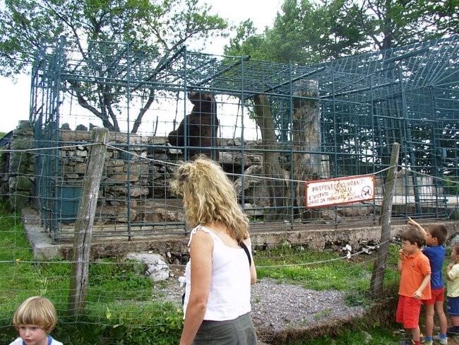 Kmetija Abram na primorskem, Podnanos - foto povečava