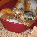 Tarica 2009 april