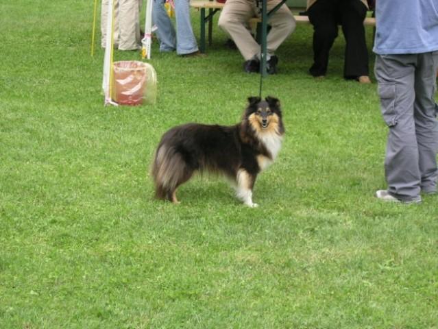 Razstava MB 2005 - foto