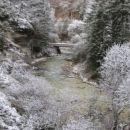 Triglavska Bistrica