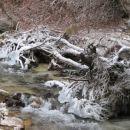 Led ob Triglavski Bistrici