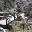 Most čez Bistrico
