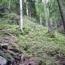 Dno Velikega Šumika predstavlja tudi konec doline, ki jo je napravila struga Lobnice. Nada
