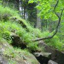 Pogled od spodaj na strmino, ki vodi do dna slapu, pa jasno kaže, da pot navzdol ni bila p