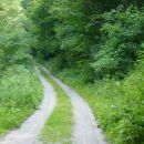 Odseki v obliki kolovoza so vedno pogostejši, pešačenje pa posledično vedno prijetnejše. K