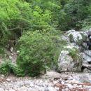Prečkanje struge pod slapom