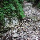 Pot na Ajdno izpira potok