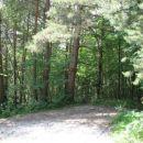 Odcep nemarkirane poti proti vasi Potoki