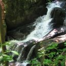 Slapišče v višjem toku Bistrice
