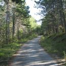 Cesta proti cerkvi Sv. Kirika
