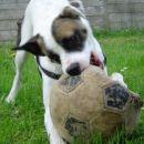 fina je tale žoga