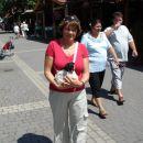 Madžarska-nakup psa