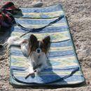Lenarjenje na plaži