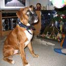 Lona in Duff (Bobi), 7.1.2007
