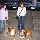 Bobi na obisku, 7.1.2007