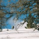 na poti proti Golemu vrhu (Jezersko, marec 2007)