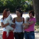 Trish, Mel, nardi (tri čveke)