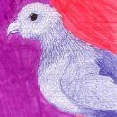 ptič 17.9.2006